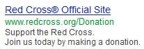 Nonprofit Google Grants AdWords example
