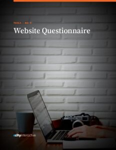 Website Questionnaire