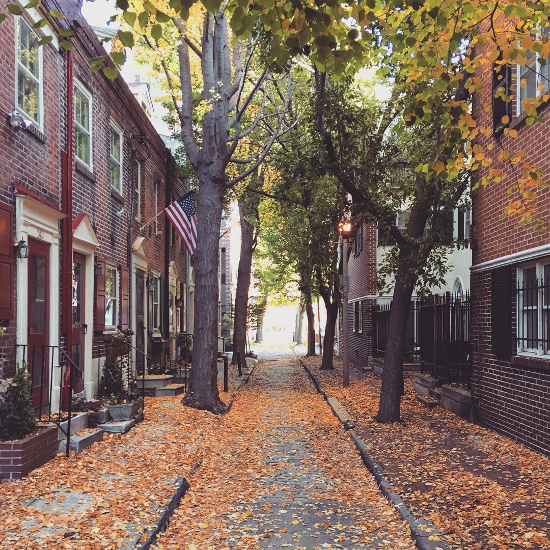 A beautiful street in Philadelphia in the fall with colorful orange and red leaves on the ground